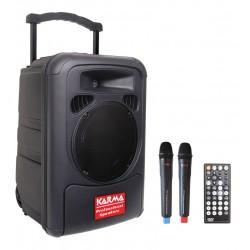Diffusore amplificato da 100W con 2 radiomicrofoni