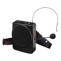 Amplificatore portatile 25W