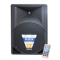 Box amplificato 300W MP3